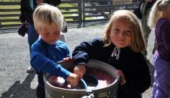 Besteforeldre-barnebarn- og Familieleirer i sommer
