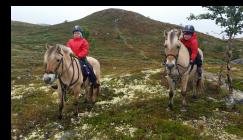Rideturer i fjellet